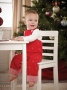 Mudpie Christmas Embroidered Tree Overalls